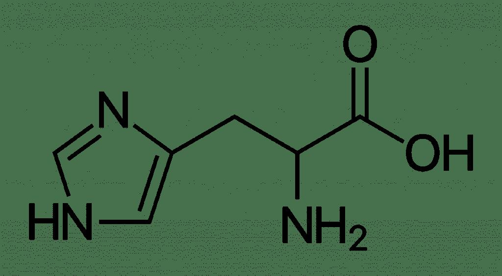 Histidina