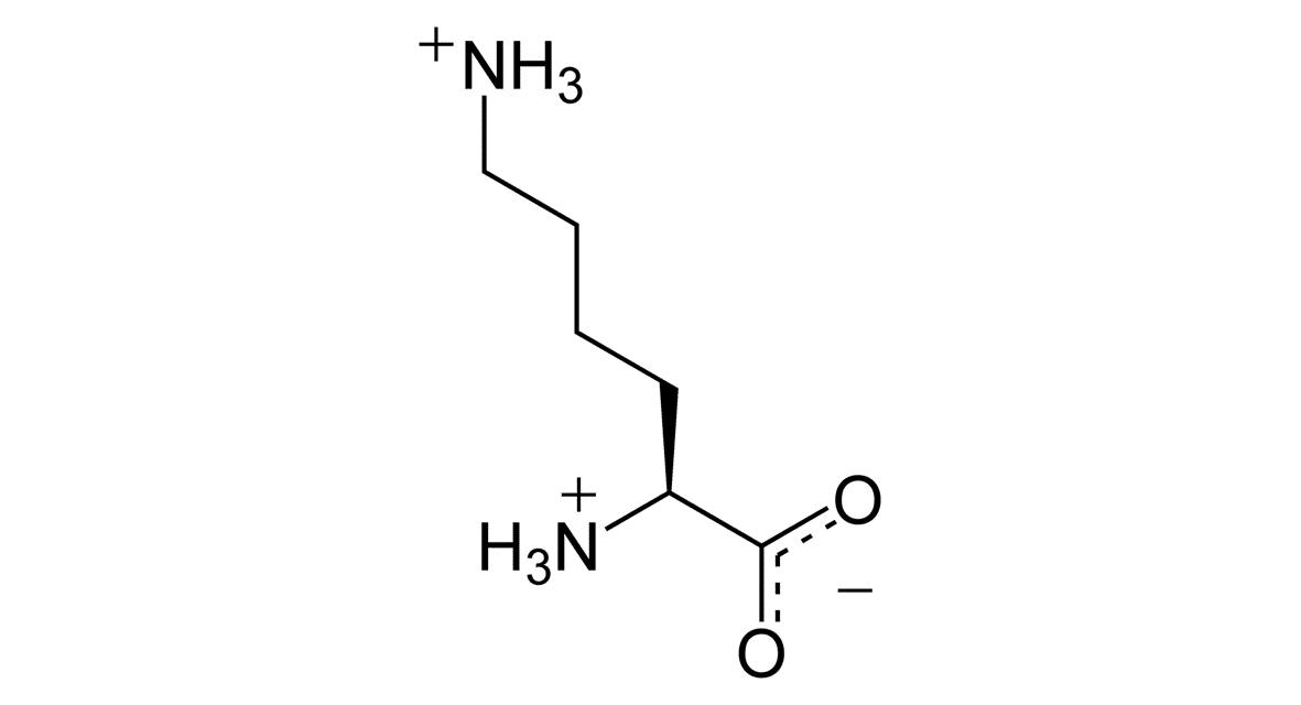 L-lisina