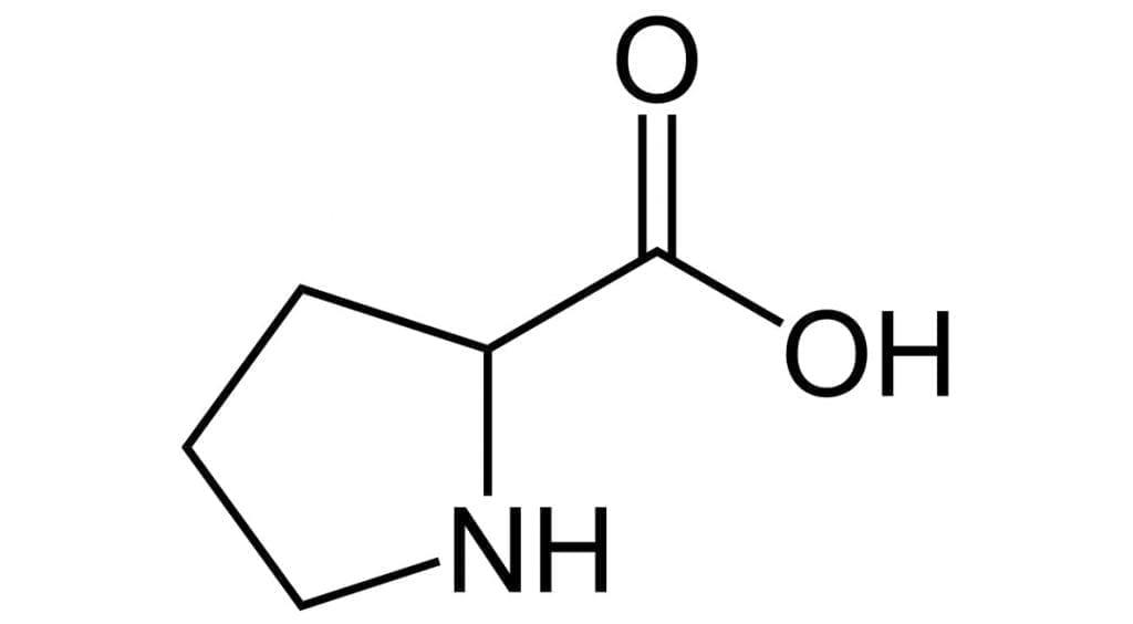 L-prolina