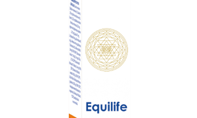 HoloRam® Equilife 100 ml