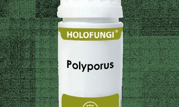 Holofungi® Polyporus  50 cápsulas