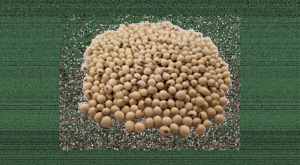 Isoflavonas de soja