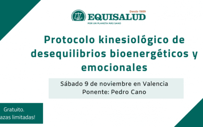 Formación en Valencia: «Protocolo kinesiológico de desequilibrios bioenergéticos y emocionales» en noviembre