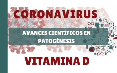 Avances científicos en inmunopatogénesis: Vitamina D