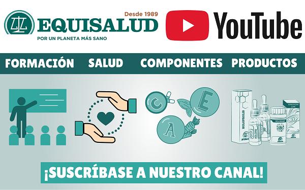 Nuevo canal de Youtube de Equisalud