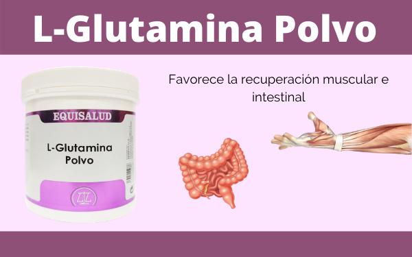 Conozca la nueva L-Glutamina en polvo