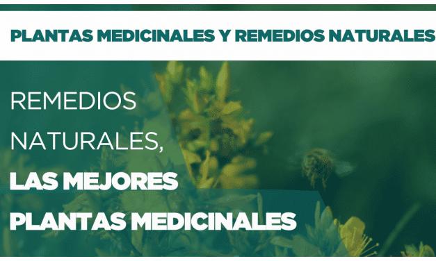 Remedios naturales, las mejores plantas medicinales. Parte 1