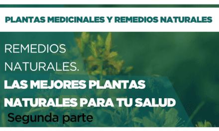 Remedios naturales: Las mejores plantas para tu salud. Parte 2