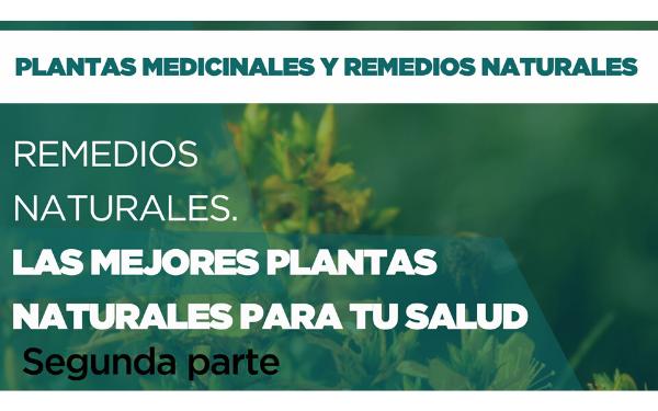 Remedios Naturales: Las mejores plantas medicinales. Parte 2