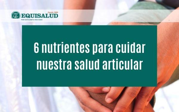 6 nutrientes para cuidar nuestra salud articular