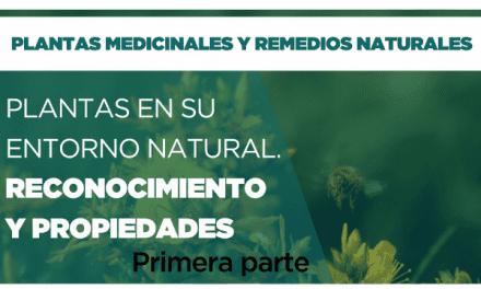 Plantas en su entorno natural. Reconocimiento y propiedades. Parte 1