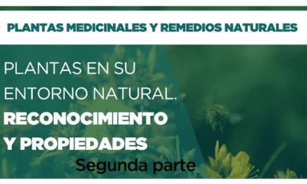 PLANTAS EN SU ENTORNO NATURAL. RECONOCIMIENTO Y PROPIEDADES. PARTE 2