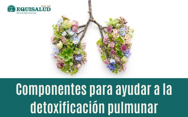 Componentes para ayudar a la detoxificación pulmonar